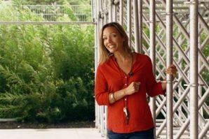 festival du film publicitaire de Cannes 2012