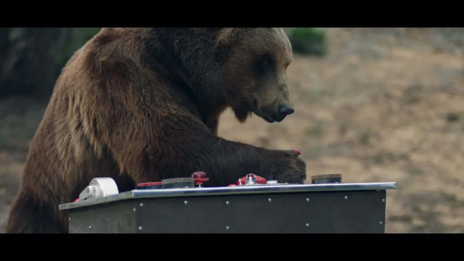 quality design f789d aaadf OtterBox : Ultra Bear-Resistant Venture Coolers - Culture Pub